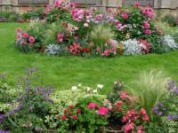Цветники на даче: виды и критерии выбора