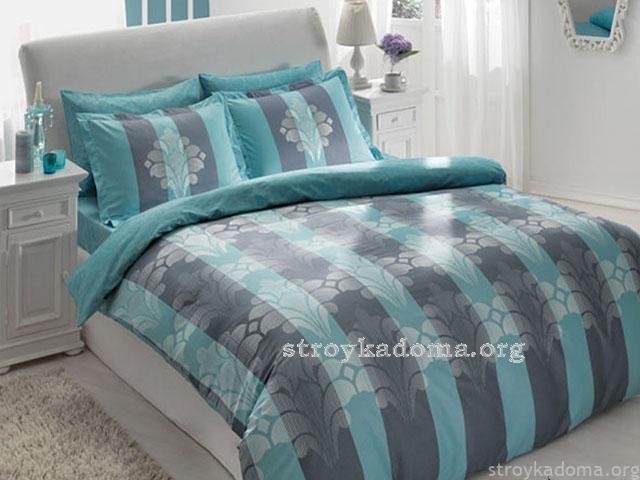 Tac-shane-blue