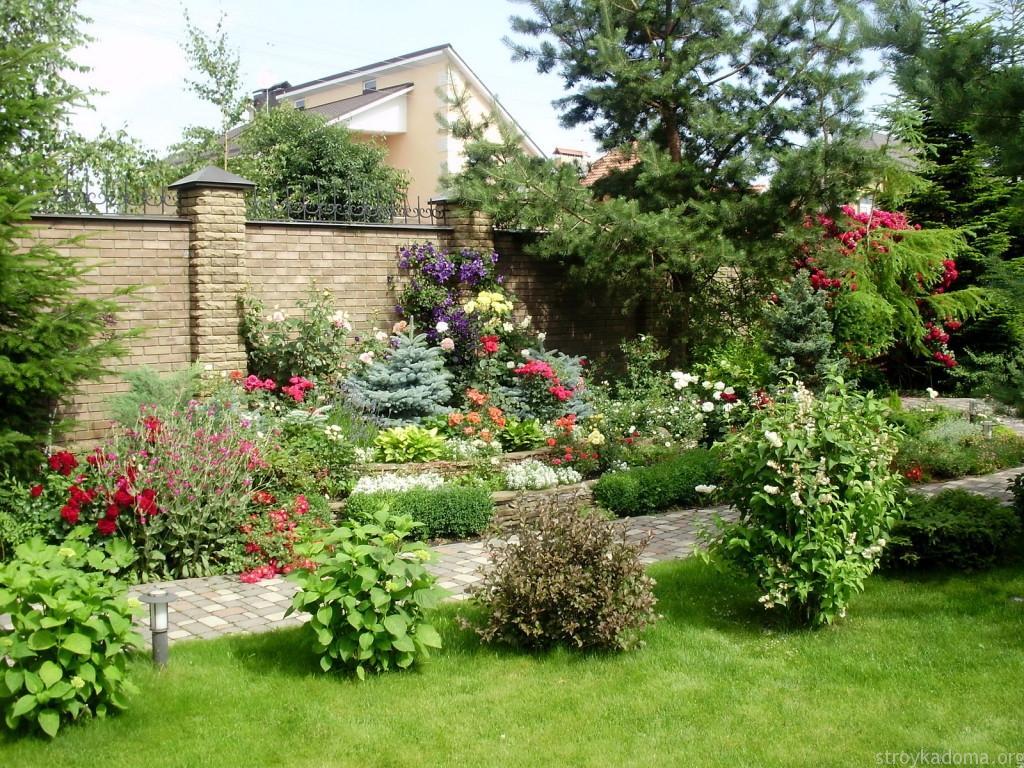 Фото кустарников в ландшафтном дизайне