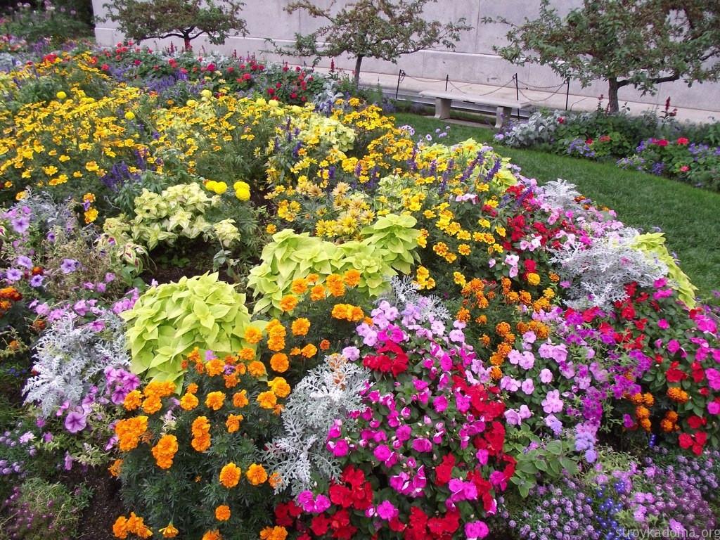 Оформление бордюра цветами 87