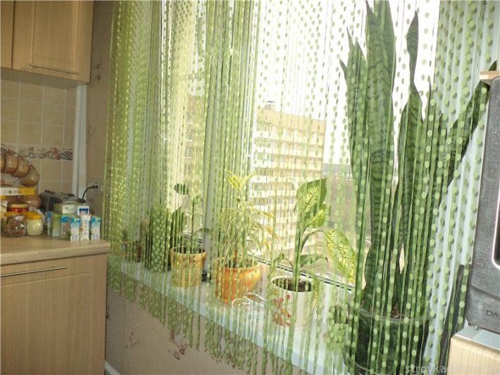 Зеленые нити в кухне