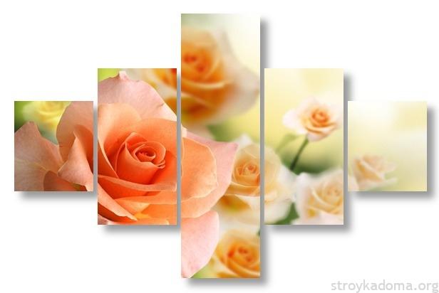 Цветы остаются цветами и привлекают красотой даже при таком разделении