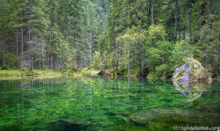 Прибрежный фото-пейзаж – натуральная зелень почти во всем своем разнообразии внесет модную нотку в прихожую, гостиную или кабинет.