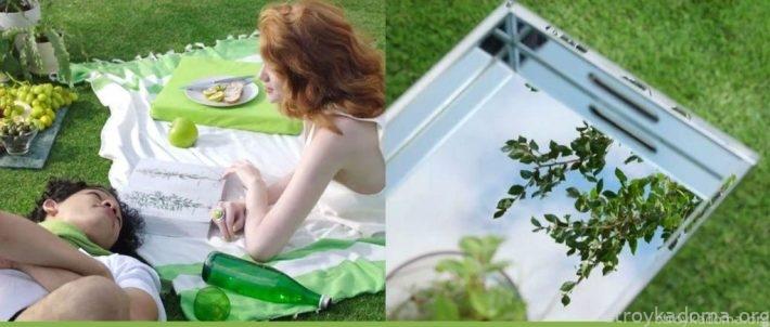 Романтический пикник в море свежей зелени